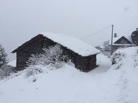Snow in the Monterosa