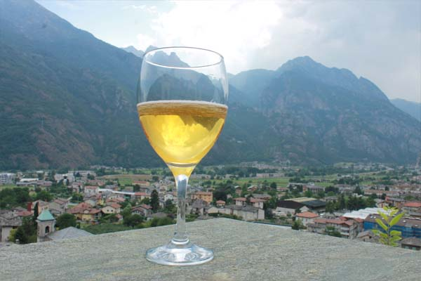 Wine tasting in Northern Italy